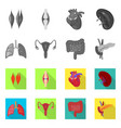 isolated object of biology and scientific icon vector image vector image