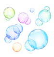 soap bubbles vector image vector image
