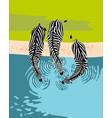 zebras drink water top view vector image vector image