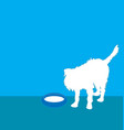 Affenpinscher dog vector image vector image