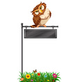 Owl standing on black sign vector image