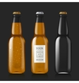 Sample of empty beer bottles vector image vector image