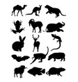 set animal silhouettes vector image vector image