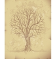Tree on old paper vector image vector image