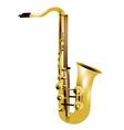 alto saxophone vector image