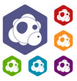 atom icons set hexagon vector image