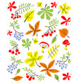 autumn floral set fall season with vector image vector image