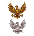 golden gothic eagle heraldic sketch icon vector image vector image