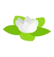 Lotus isometric 3d icon vector image vector image