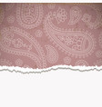 Pink paisley frame vector image vector image