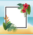 poster hibiscus and bird of paradise beach leaves vector image vector image