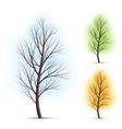 season trees vector image vector image