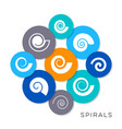 simple spiral icons vector image vector image