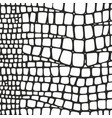 snake skin black and white texture vector image vector image