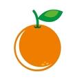 orange fresh fruit icon vector image