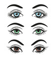 basic colors female eyes and brows vector image vector image