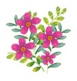 floral water color decoration vector image vector image