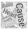 Stop Smoking in Healthy Aging Word Cloud Concept vector image vector image