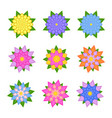 a set of beautiful colorful flowers isolated on vector image vector image