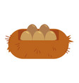 bird eggs in straw nest - fresh organic and eco vector image
