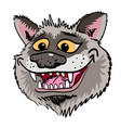 cartoon image of grinning wolf face vector image vector image