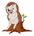 cartoon little hedgehog sitting on tree stump vector image vector image