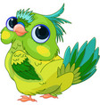 cute baby parrot vector image vector image