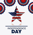 Indepedence day vector image vector image