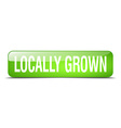 locally grown green square 3d realistic isolated vector image vector image