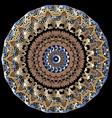 ornamental colorful baroque mandala pattern vector image vector image