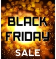 Black friday sale background explosion vector image vector image