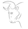 black line bull head on white background hand vector image vector image