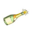 champagne blank label bottle explosion color vector image