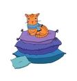 Cute cartoon cat on cushions vector image vector image