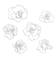 Flower line art set vector image