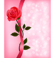 Holiday background with red rose and ribbon vector image vector image