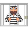 Prisoner behind bar vector image vector image