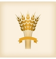 Golden sheaf of wheat with ribbon vector image vector image