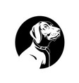 head a german shorthaired pointer dog retro vector image vector image
