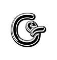 letter g celtic font norse medieval ornament abc vector image
