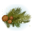 pine branch with cone vector image
