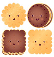 set of cute choclate cookies vector image vector image