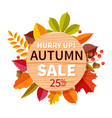 autumn sale background autumnal seasonal shopping vector image vector image