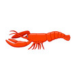 lobster fish on a white background vector image