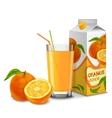 orange juice set vector image vector image