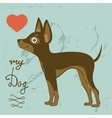 Russian toy terrier vector image