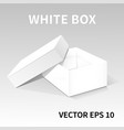 white packing box2 vector image