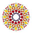 colored circular fruity mandala vector image vector image