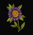 colorful purple daisy flower plant embroidery in vector image vector image
