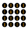 golden grain ears on black rounds vector image vector image